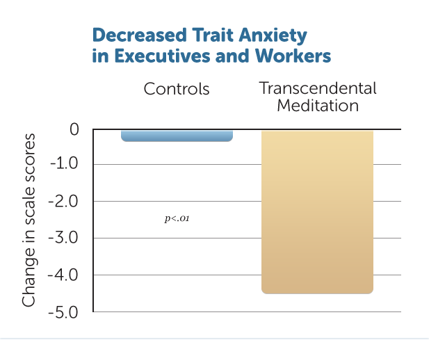 B12-Decr-Trait-Anxiety-Exec
